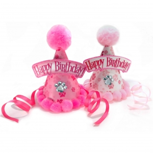 Poms Away! Birthday Hats for Dogs