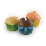 PupCup Cakes- Bulk Packs